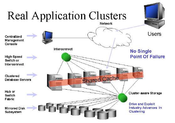 Oracle rac persistent storage solutions for Oracle 10 g architecture
