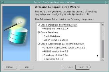 Oracle Applications 11i – Persistent Storage Solutions